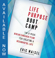 Life Purpose Bootcamp the Book