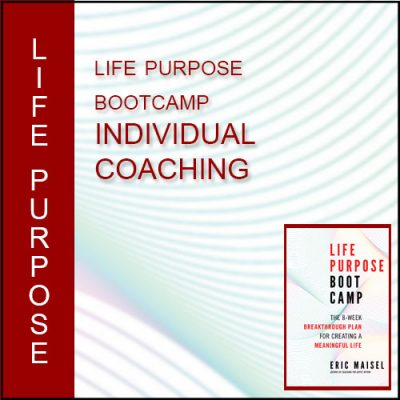 Life Purpose Boot Camp Individual Coaching
